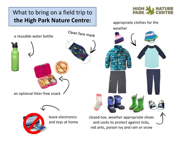What-to-bring-on-a-field-trip-to-the-High-Park-Nature-Centre-1.png#asset:9415